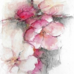 'Zarte Blüten' 26x34cm auf Karton